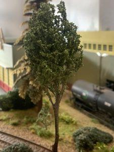 Last tree
